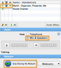 GoToMeeting - Audio and webcam settings